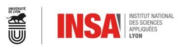 INSA_2.jpg
